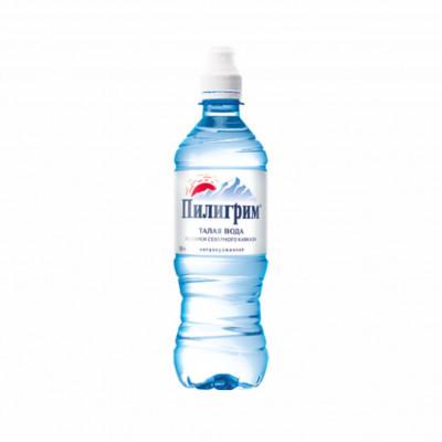 Вода Пилигрим 0,5 литра спорт негазированная (8 шт.)