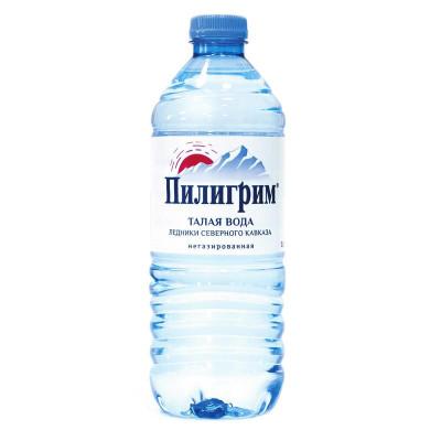 Вода Пилигрим 0,5 литра ПЭТ негазированная (12 шт.)